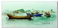 九岛渔光曲
