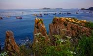 美丽海王九岛